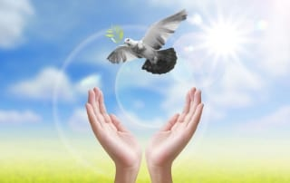 Letting Go of negative emotions on a Personal Healing Retreat